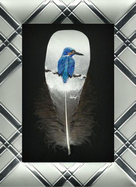 Eisvogel, Silber, King, Natur, Feder, Fisher
