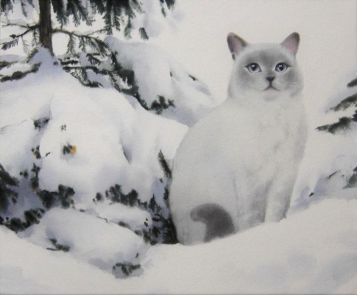 Winter, Schnee, Katze, Tiere, Aquarell, Morgen
