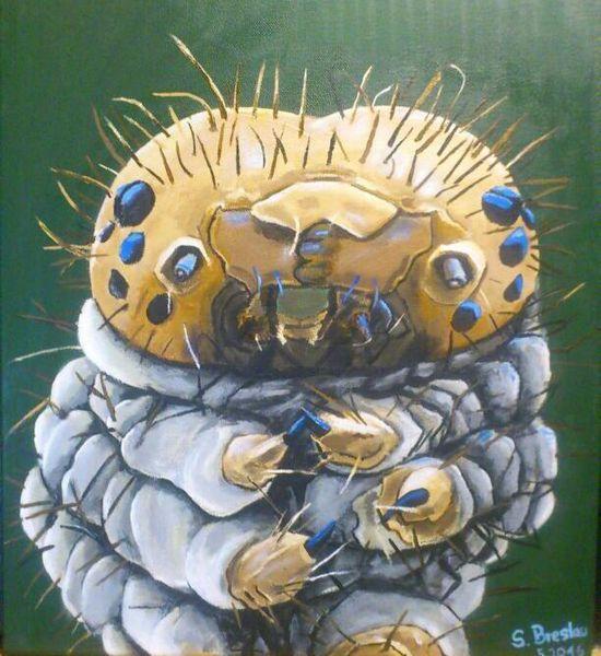 Portrait, Insekten, Malerei, Acrylmalerei, Tiere, Natur
