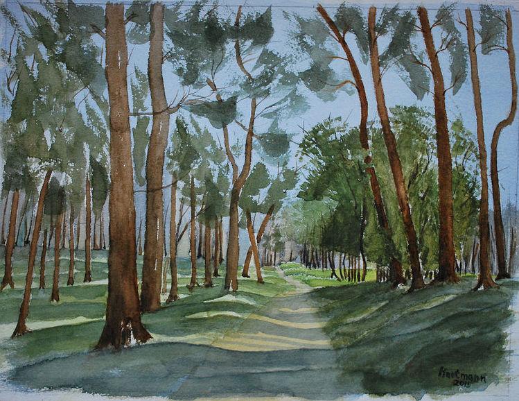 Baum, Aquarellmalerei, Schatten, Wald, Haltern am see, Landschaft