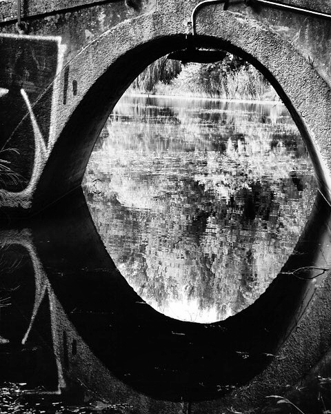 Teich, Brücke, Fotografie