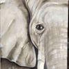 Natur, Elefant, Schwarz weiß, Ölmalerei
