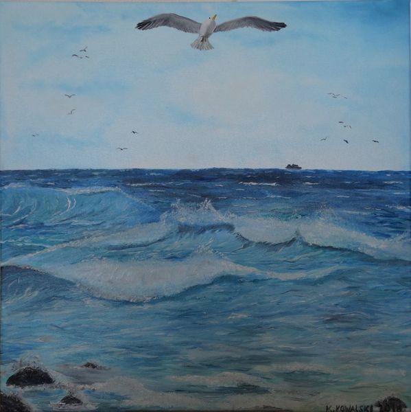 Weiß, Wolken, Vogel, Wind, Möwe, Meer