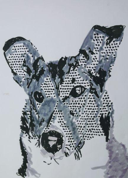 Hütehund, Pop art, Hund, Collie, Kurzhaar collie, Smooth coated collie