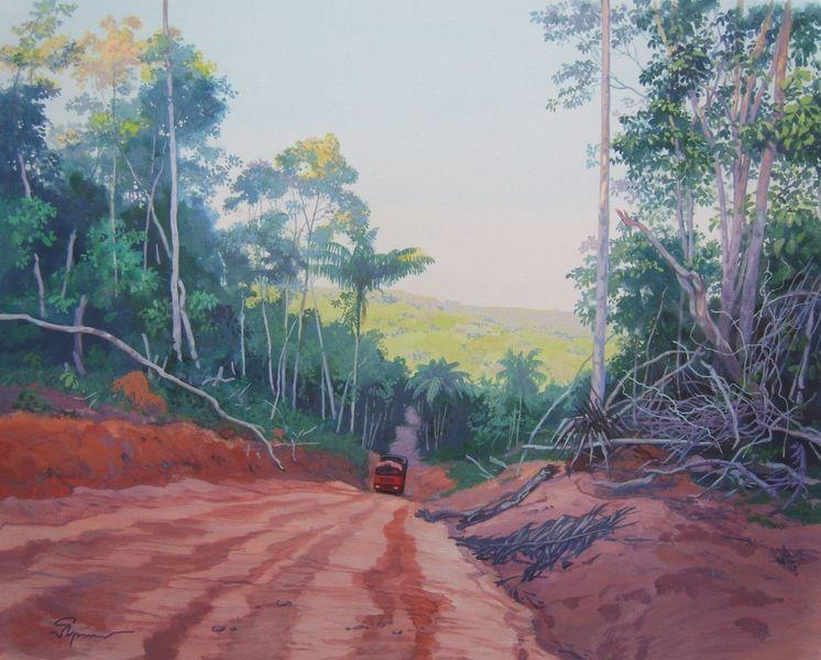Selva, Brasilien, Straße, Amazonas, Malerei