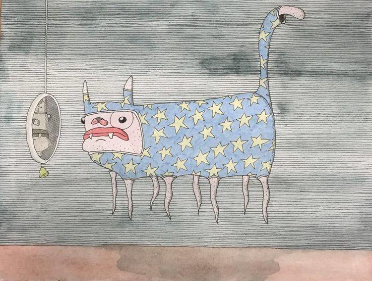 Katze, Spiegel, Stern, Zeichnungen, Wellensittich
