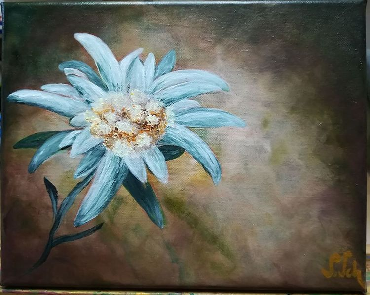Blumen, Weiß, Braun, Edelweiß, Beige, Malerei