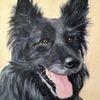 Tiere, Hund, Haustier, Malerei