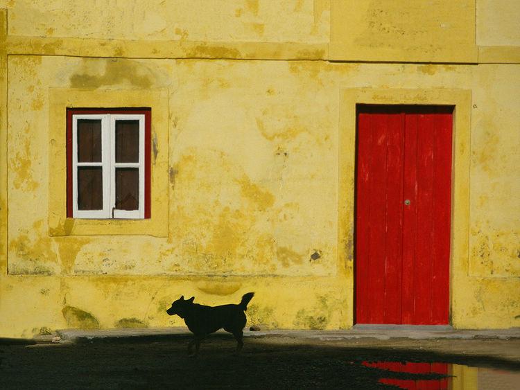 Rot, Stille, Tiere, Tür, Wasser, Portugal
