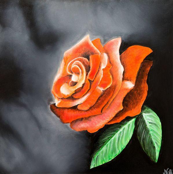 Rot, Pflanzen, Blätter, Rose, Natur, Malerei