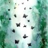Spirituell, Natur, Leichtigkeit, Schmetterling