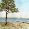 Meerblick, Strand, Baum, Flensburg