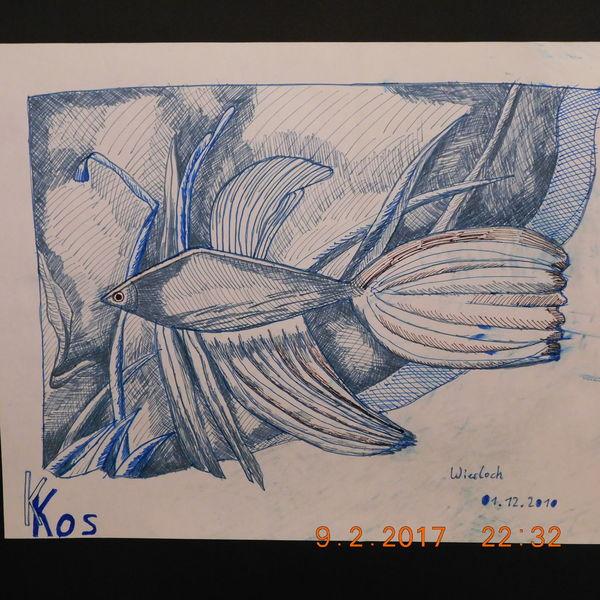 Fischportrait, Mischtechnik, Abstrakt, Zeichnungen