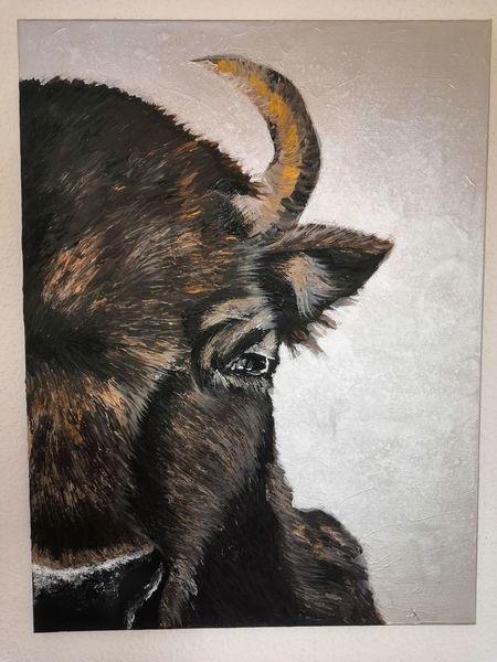 Tiere, Acrylmalerei, Malerei, Silber, Bulle