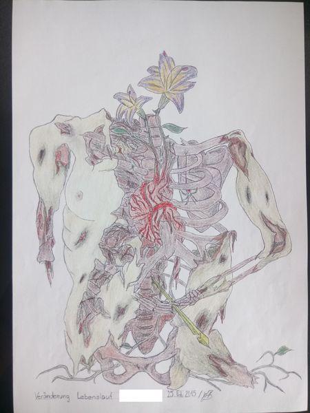 Anatomie, Leben, Natur, Vergänglichkeit, Surreal, Tod