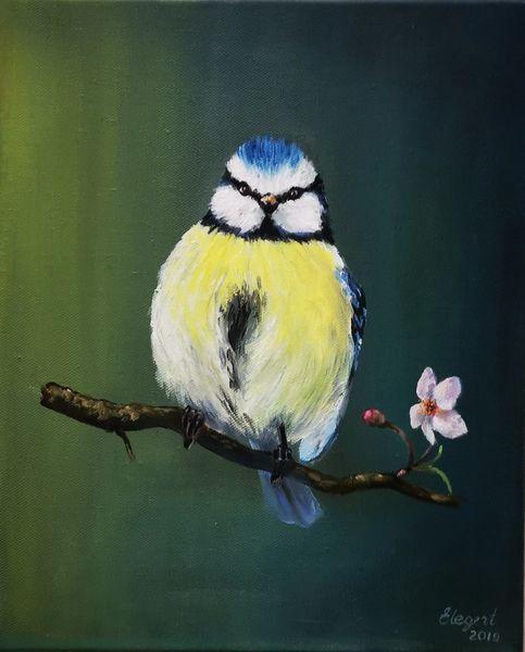Vogel, Natur, Blaumeise, Ölmalerei, Malerei