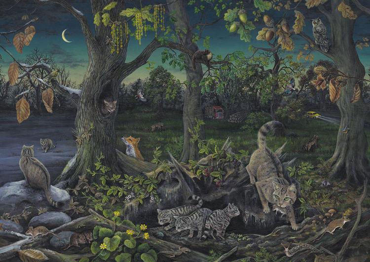 Natur, Pflanzen, Landschaft, Acrylmalerei, Katze, Buntstiftzeichnung