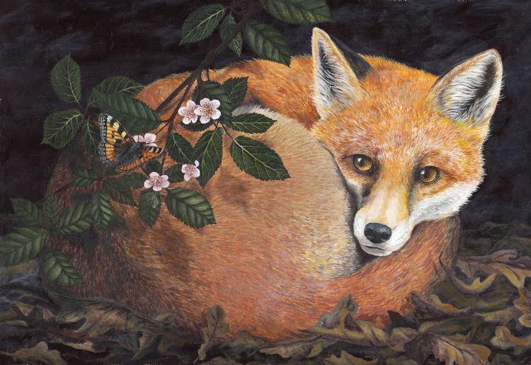 Natur, Malerei, Acrylmalerei, Tiere, Fuchs