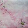 Spinne, Natur, Kirschblüten, Tiere
