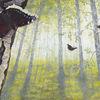 Tiere, Pflanzen, Acrylmalerei, Schmetterling