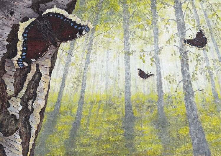 Natur, Tiere, Pflanzen, Acrylmalerei, Schmetterling, Trauermantel