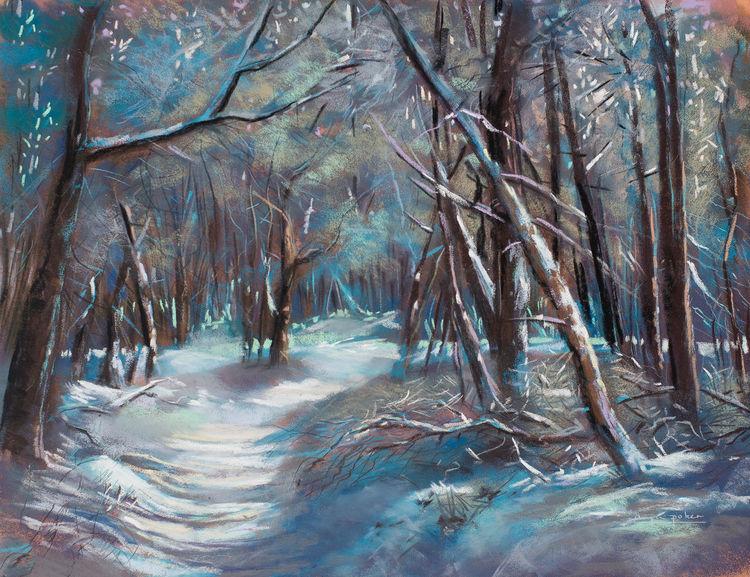 Wald, Stamm, Blau, Laub, Winter, Türkis