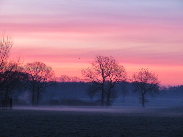 Natur, Sonnenaufgang, Fotografie, Nebel