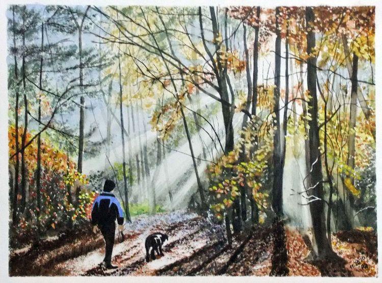 Laub, Sonnenstrahlen, Herbst, Spaziergänger, Wald, Hund