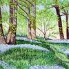 Frühling, Licht, Blumen, Wald