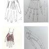 Skelett, Hand, Muskulatur, Hände