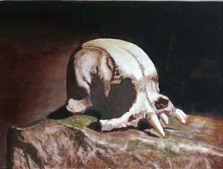 Stein, Struktur, Moos, Schädel, Malerei, Stillleben