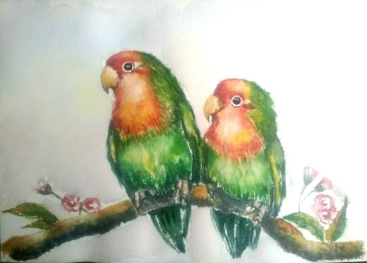 Vogel, Himmel, Agapornis, Grün, Aquarellmalerei, Tiere