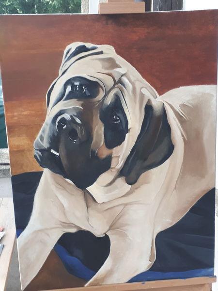 Mastiff, Portrait, Malerei, Ölmalerei, Tiere