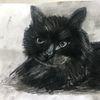 Pastellmalerei, 20 x30, Katze, Mischtechnik