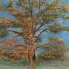 Herbst, Nebel, Baum, Aquarell