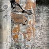 Mauerwerk, Morbide, Struktur, Fotografie