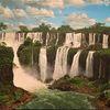 Wald, Brasilien, Regenwald, Iguazu waterfalls