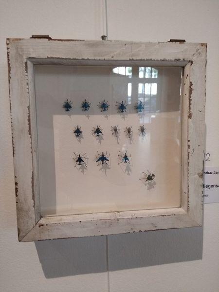 Flugzeug, Insekten, Düse, Fliege, Plastik, Flieger