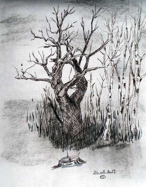 Tuschmalerei, Natur, Zeichnungen,