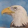Vogel, Adler, Gouachemalerei, Aquarell