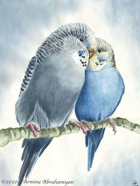 Vogel, Papagei, Malerei, Aquarellmalerei, Wellensittiche, Gemälde