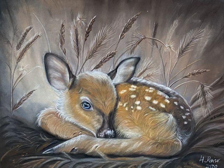Wiese, Natur, Reh, Wald, Malerei, Tierwelt