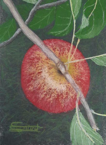 Herbst, Äste, Blätter, Apfel, Malerei, Stillleben