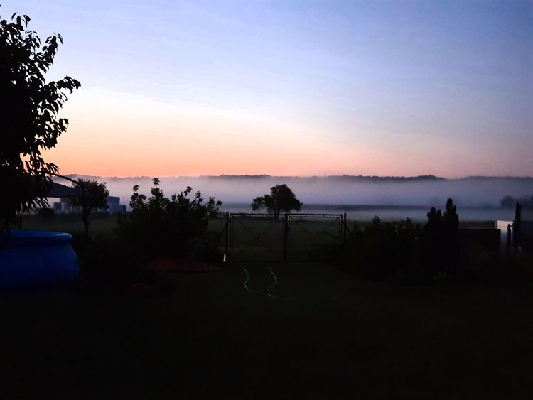 Landschaft, Nebel, Morgen, Fotografie