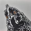 Böser blick, Tiere, Huhn, Vogel