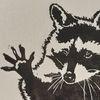 Waschbär, Tiere, Linolschnitt, Druckgrafik