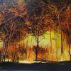 Waldsterben, Waldbrand, Natur, Forest fire