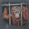 Gefängnis, Pastellmalerei, Affe, Aussterben