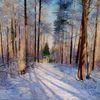 Natur, Winter, Landschaft malerei, Schnee
