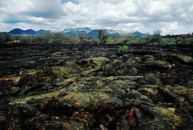 Lavafeld, Taita, Tsavo, Kenia, Fotografie, Lava
